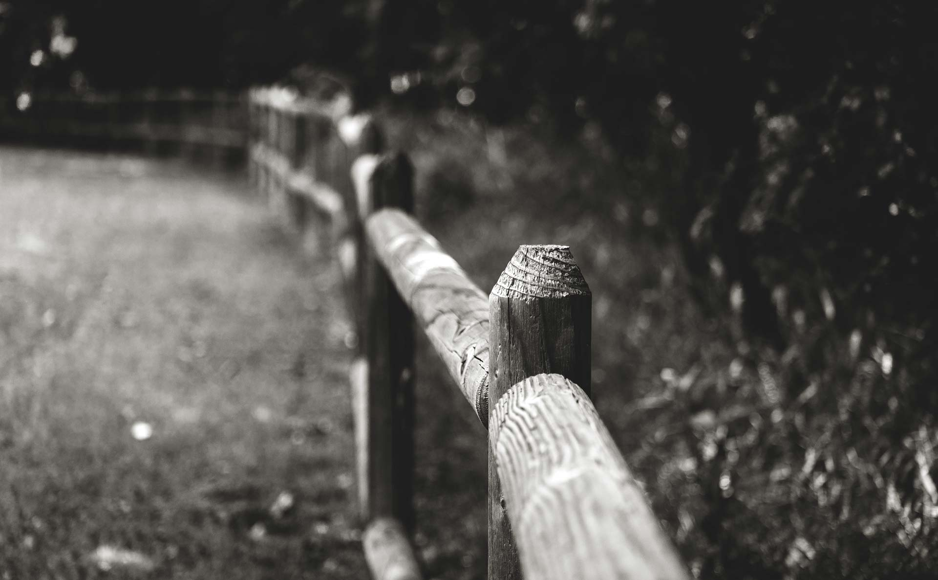 wood post fence
